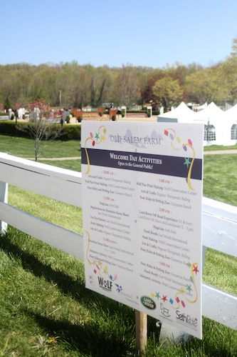 Welcome Day features a variety of events and competition.