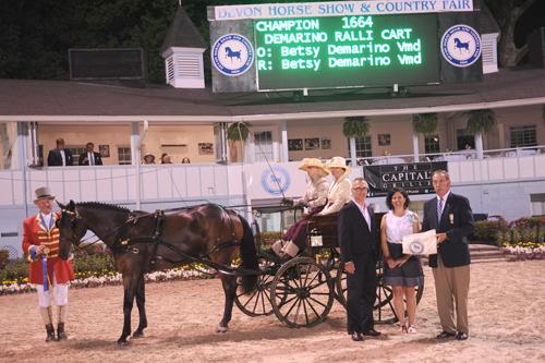 Betsy DeMarino Single Horse Championship presentation. Photo by Alix Coleman