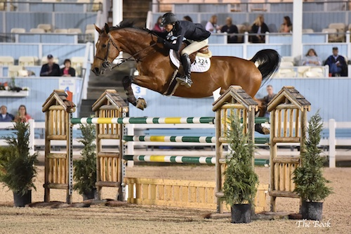 Chapot and Zealous win $10,000 Open Jumper speed class