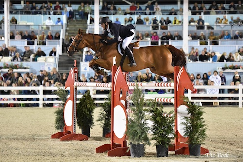 McLain Ward and Rothchild. The Book LLC