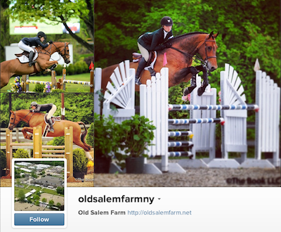 Join us on Instagram to see behind-the-scenes of the Old Salem Farm Spring Horse Shows!