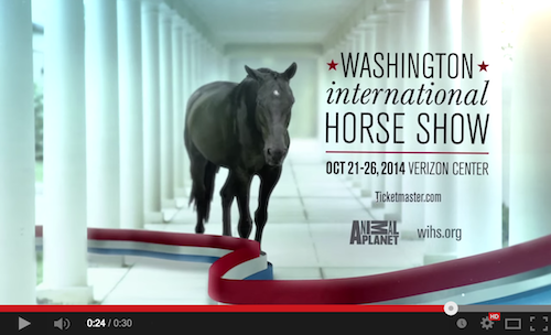 Washington International Horse Show Logo International Horse Show