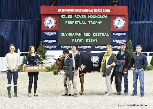 Glynhafan Red Kestrel and Farah Rizvi in their presentation for Grand Champion Pony Hunter