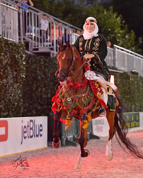 Cathy Vecsey and HL Sanction were the winners of the Arabian Mounted Native Costume class for the second year in a row at the Rolex Central Park Horse Show.